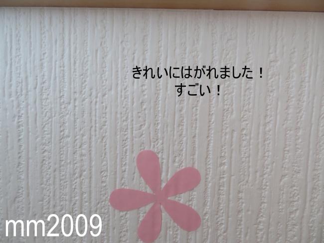 【ダイソー】壁紙に貼れるフックがすごい!跡を残さず剥がせるのか検証してみた!