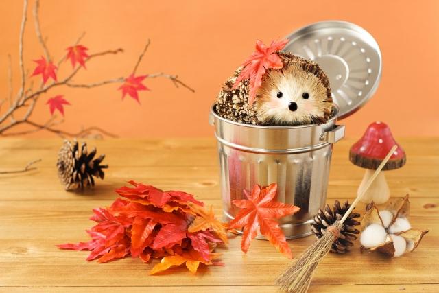 年末大掃除が簡単ラクちんに!片づけ&掃除は秋がおすすめです